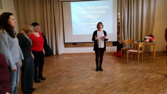 Lituanistinio ugdymo seminaras, 2017