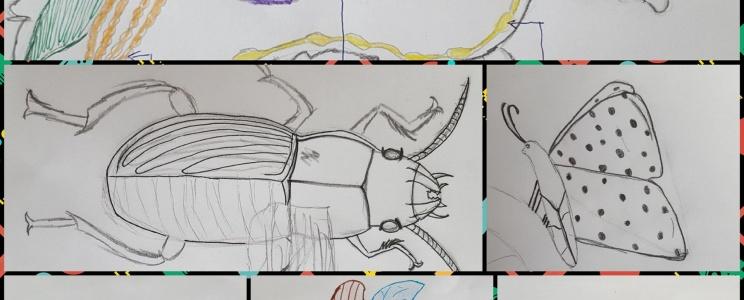 """Künstlerische Wiederholung zum  biologischen Thema """"Insekten und Spinnen"""""""