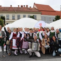 Gimnazijos atstovai Lietuvos šimtmečio Dainų šventėje (Foto: D. Šulcas ir A. Ručienė)