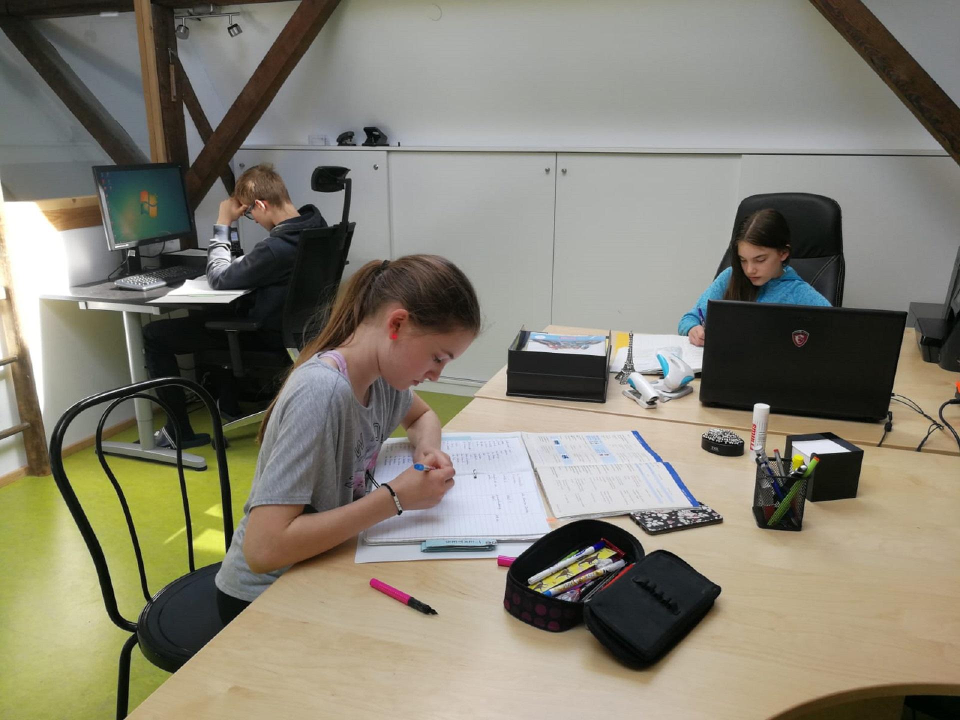 Koronavirusas verčia mokyti ir mokytis kitaip (Foto: M. D. Schmidt)