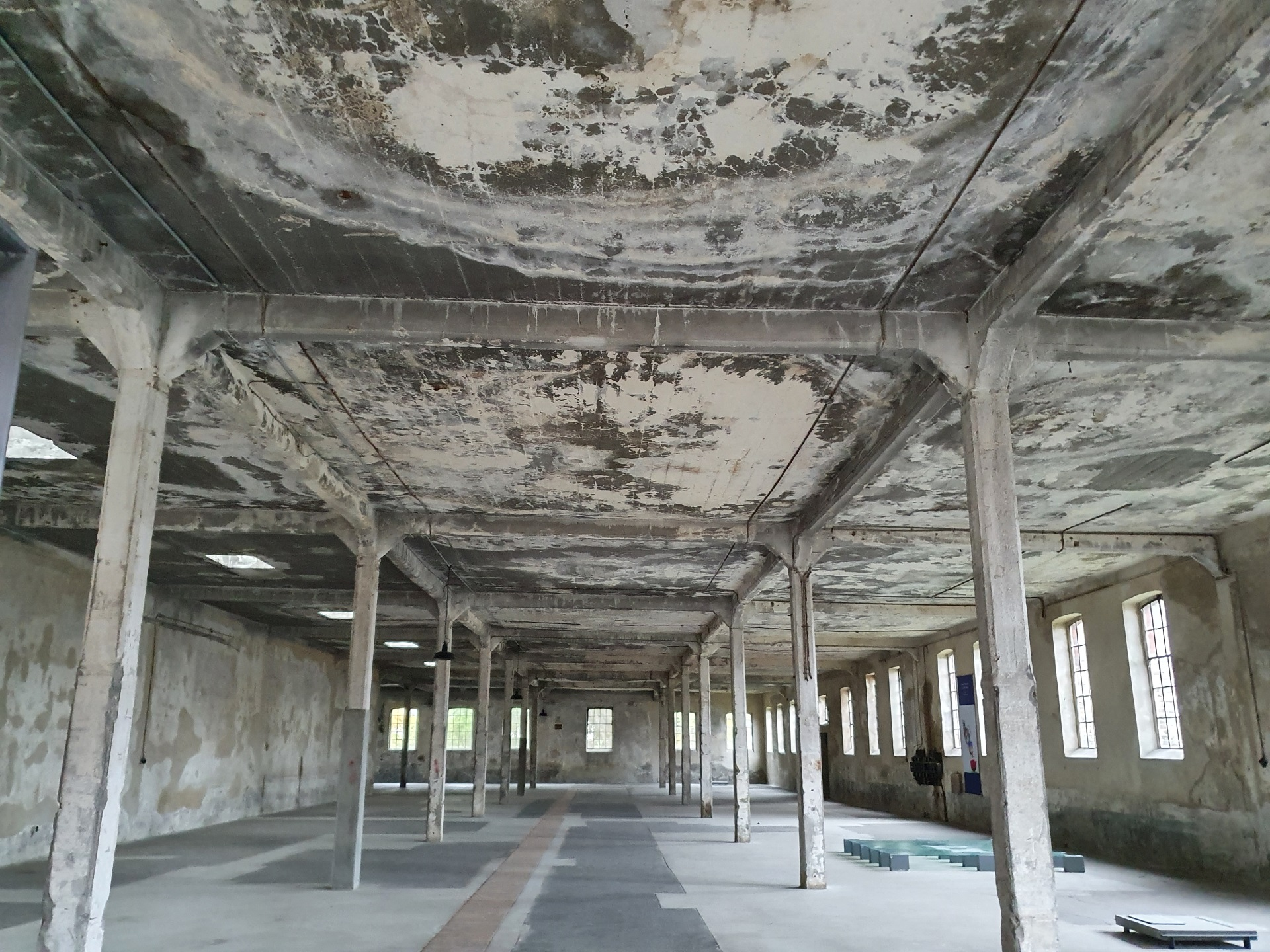 Išvyką į buvusią koncentracijos stovyklą Osthofene (Foto: A. D'Elia)